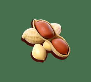 peanuts-fortune-symbol